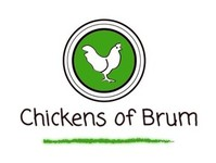 Chickens of Brum - Birdtrader